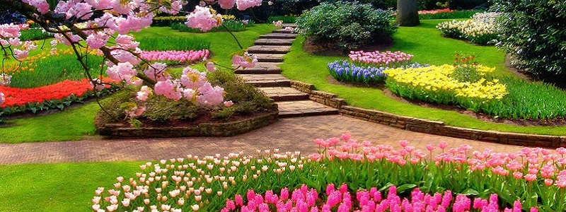 парки Дніпра, весна, парк