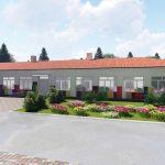 У Петриківці реконструюють столітню школу