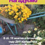 Ботанічний сад ДНУ запрошує на розпродаж рослин