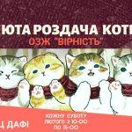 Дніпрян запрошують на «Люту роздачу котів»