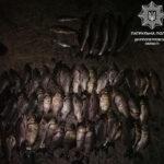 У Синельніковському районі водний патруль виявив браконьєра